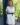 Robe saharienne blanche manches courtes-2
